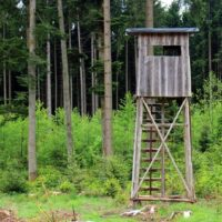Elevated Hunting Box Blind