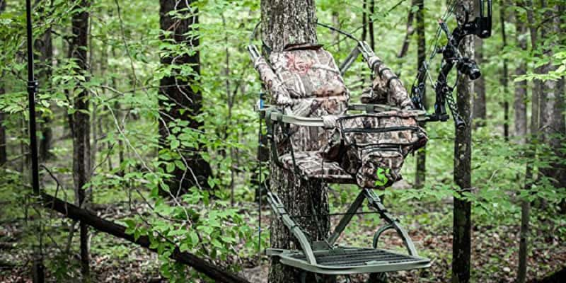 How to Choose the Correct Tree Stand