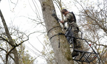 Tree Stand Buyer's Guide