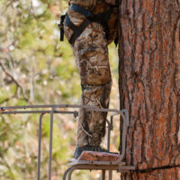 Tree Stand Safety Guidelines