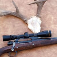 Which is the Best Deer Hunting Rifle -